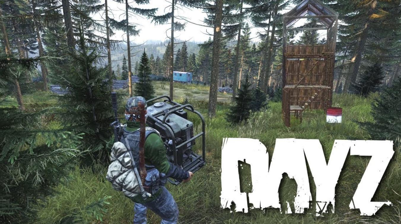 game survival dayz