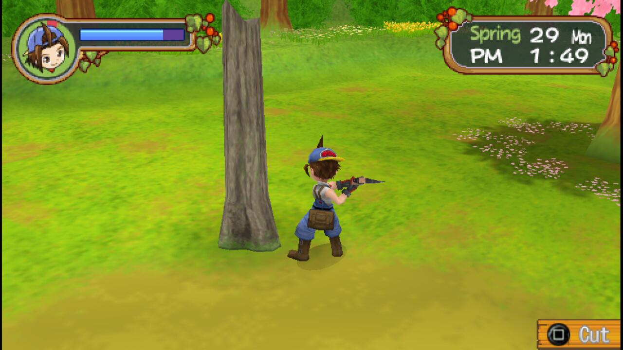 Harvest Moon Hero of Leaf Valley